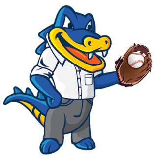 Hostgator Webhosting Review For NewBies