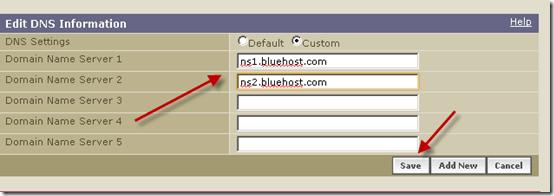 DNS-save
