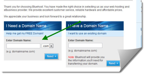 Bluehost Free Domain 500x259 Bluehost Discount Coupon : $4.95 Promo Offer