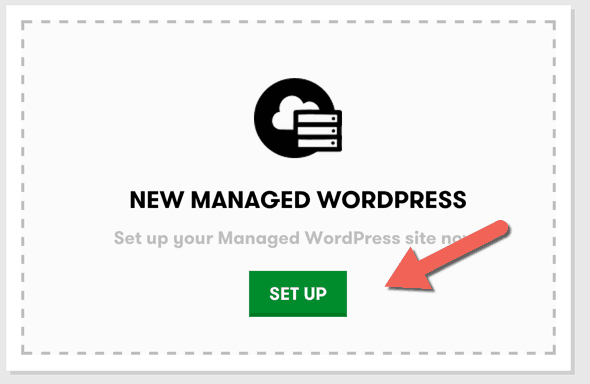 New managed WordPress Setup